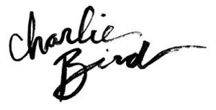 Charlie Bird Restaurant SOHO NYC If The Devil Had Menopause Toby Lubov 2013