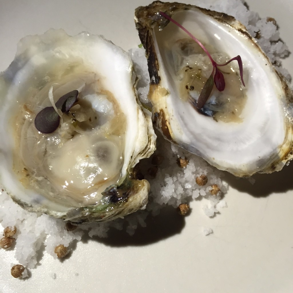Malbeque Oysters