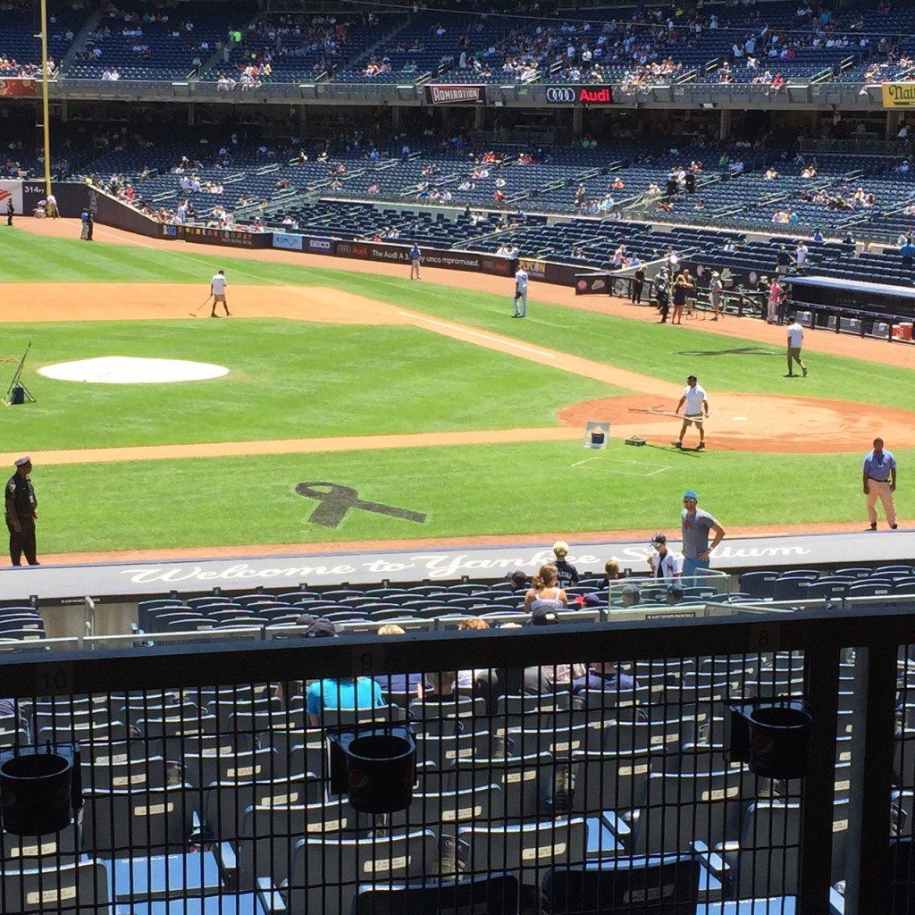 Yankee Stadium, June 24th, 2015