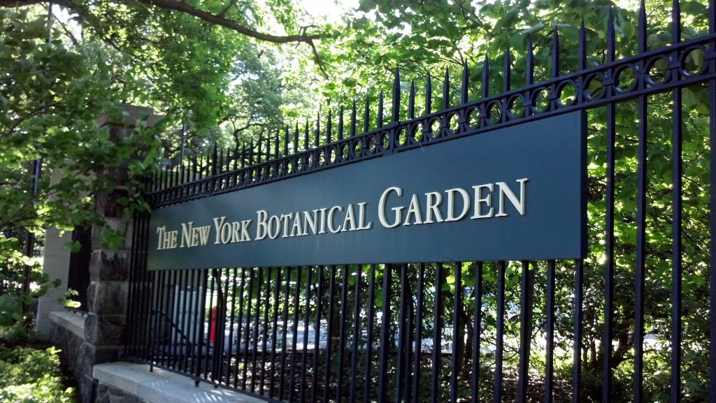 Beauty beyond the bronx bombers - Bronx botanical garden free admission ...