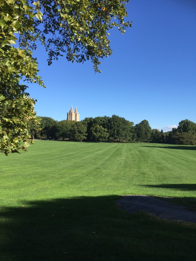 Sheep's Meadow