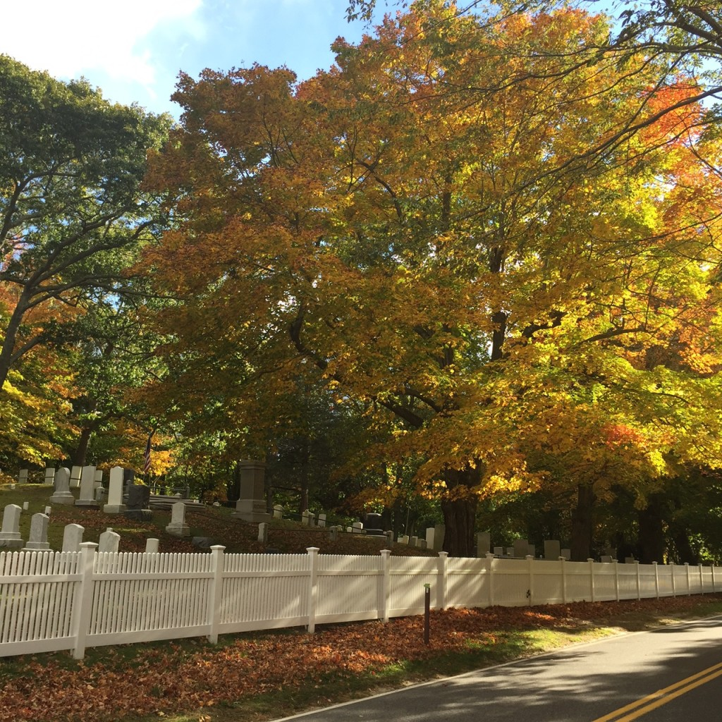 Fall Into The Hamptons…