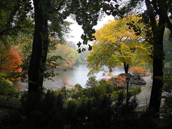 a-rainy-fall-day-in-central-park