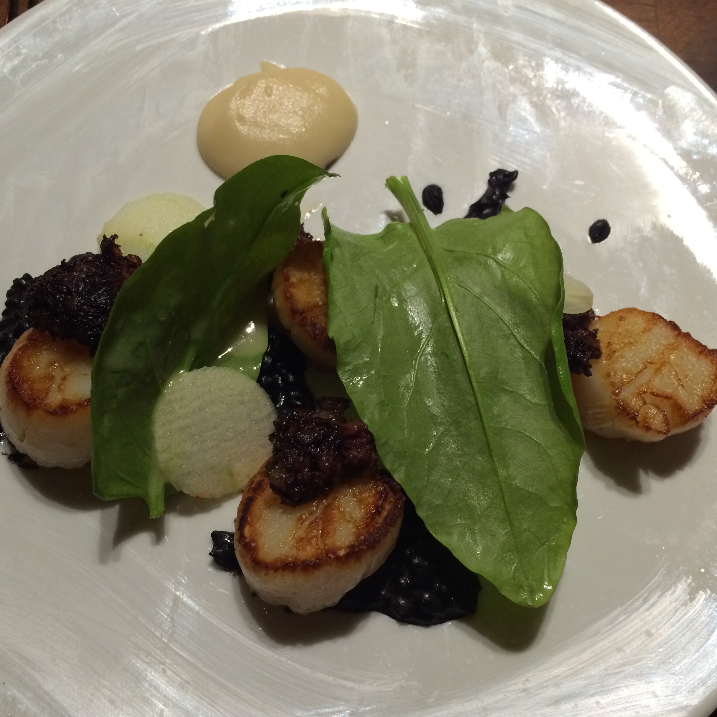 Scallops At Frenchies Restaurant