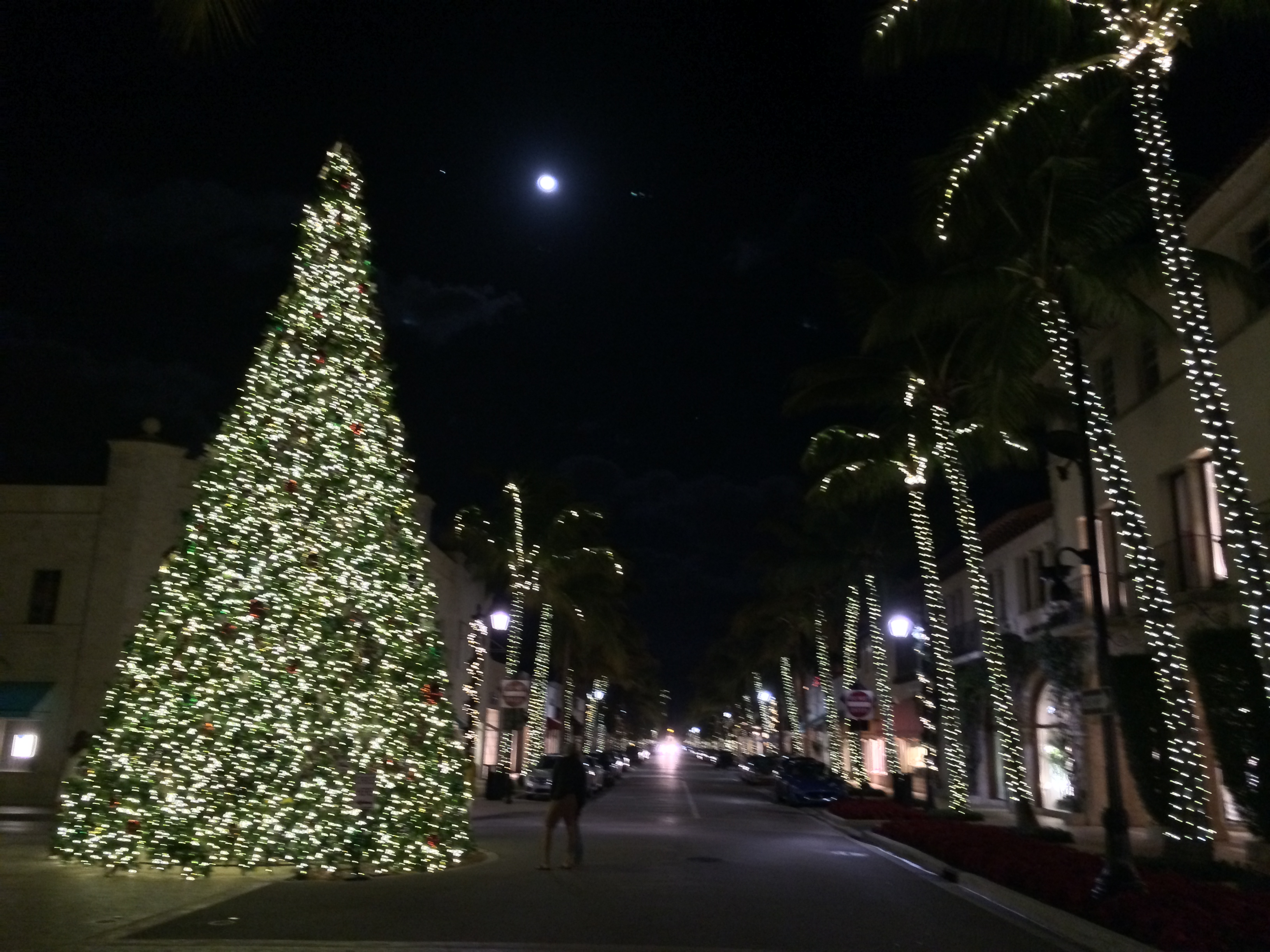 Palm Beach Holiday Pomp…