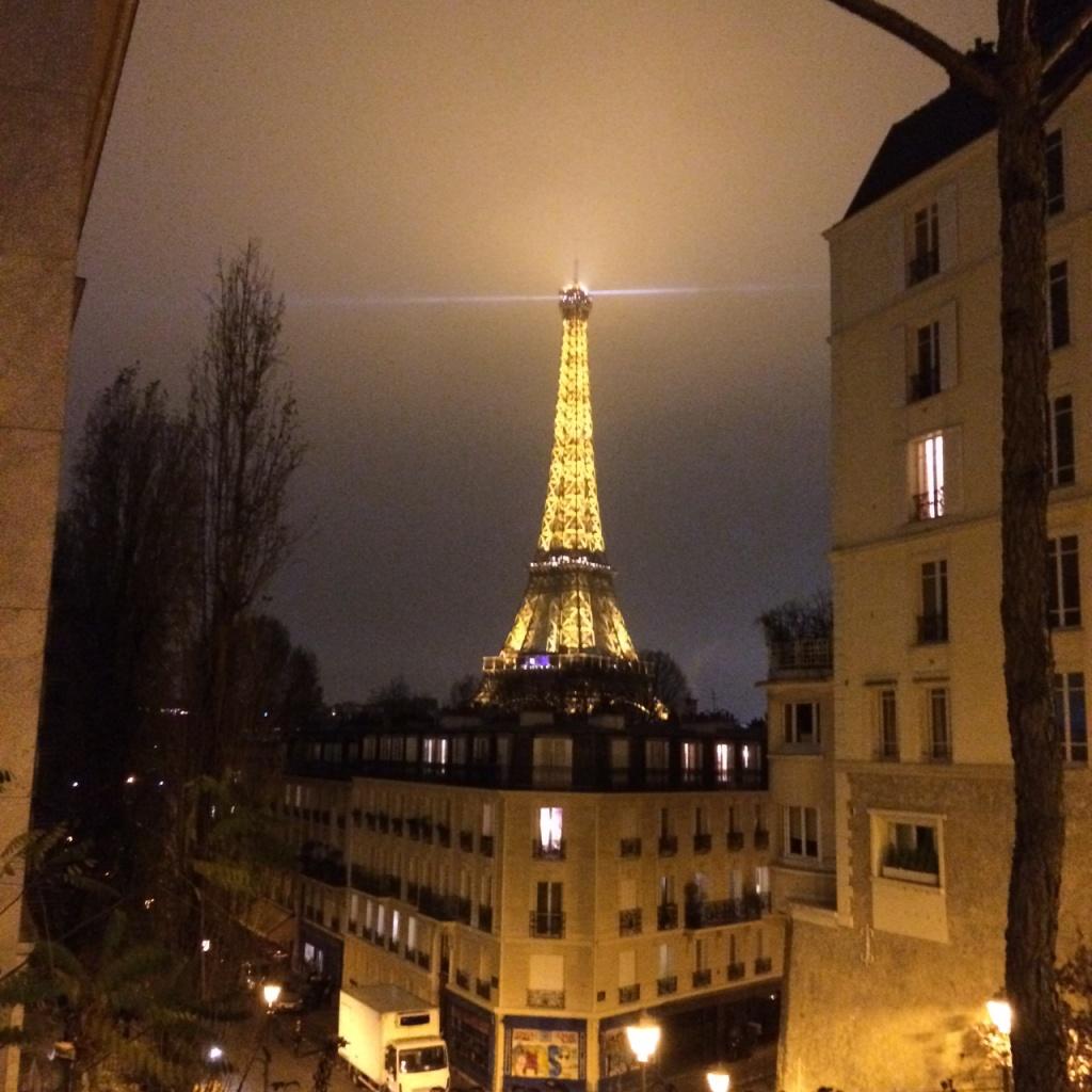 Eiffel View From Palais de Tokyo