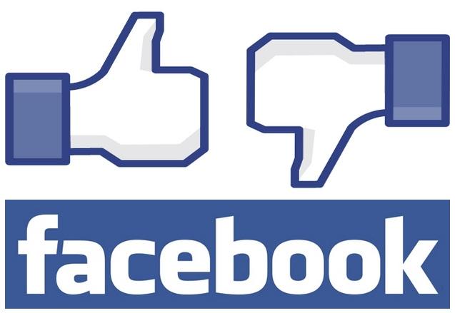 Death, Dogs, Politics & Facebook…