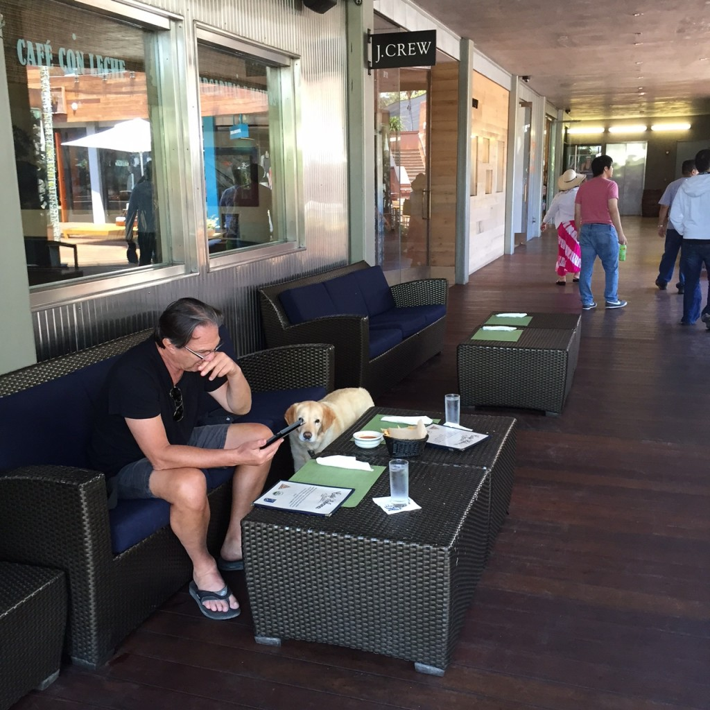 Cafe Habana, Malibu