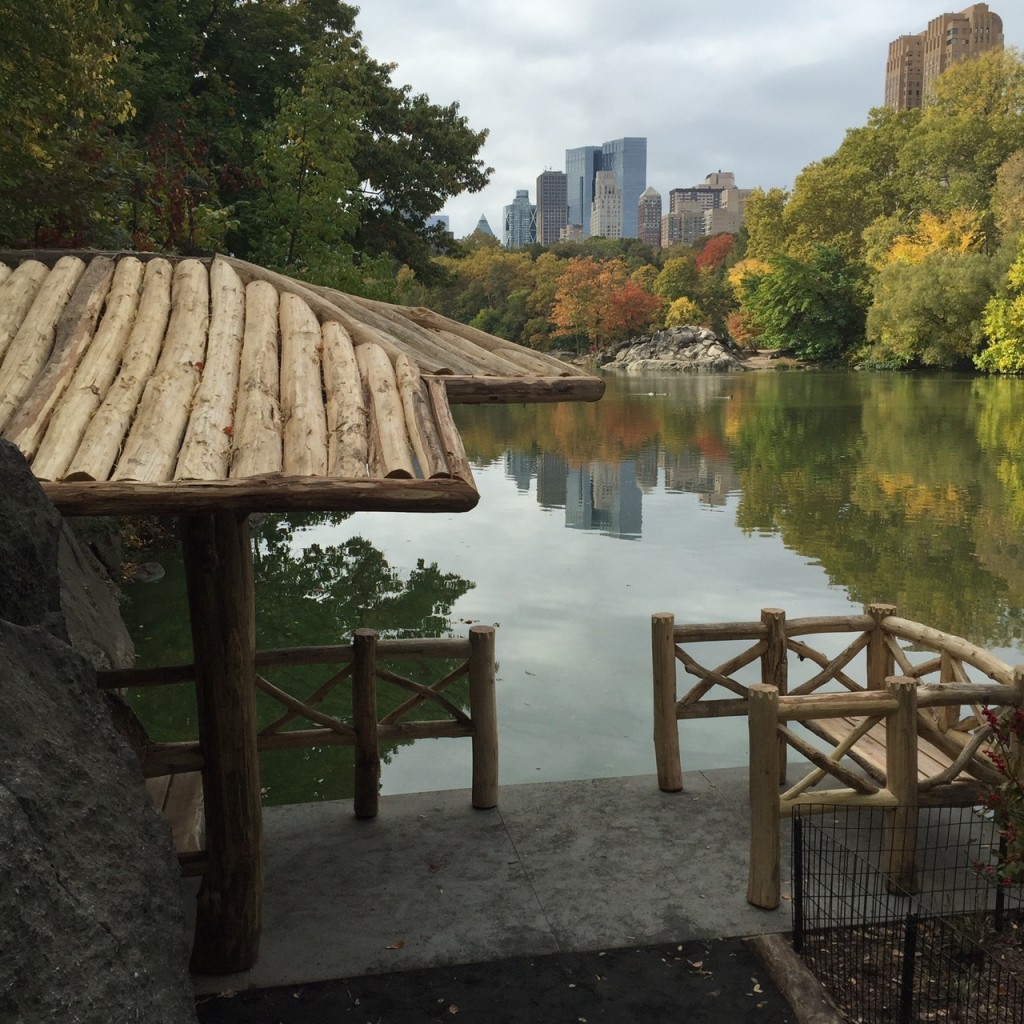 Chambers Landing, Central Park